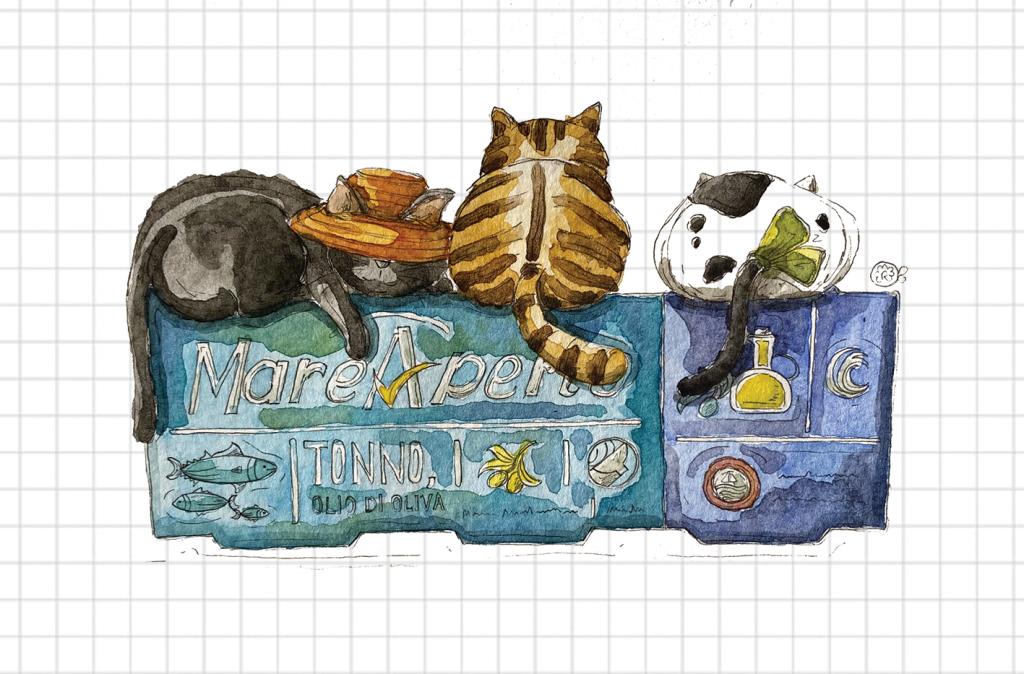 Gatti e scatoletta di tonno
