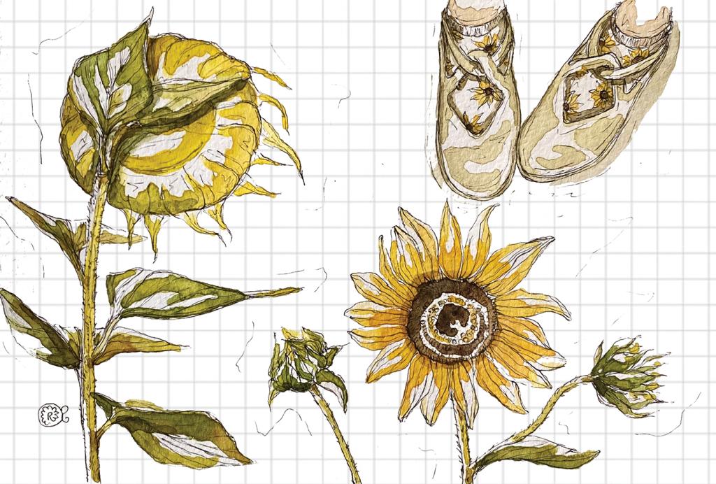 Illustrazione girasoli fiori
