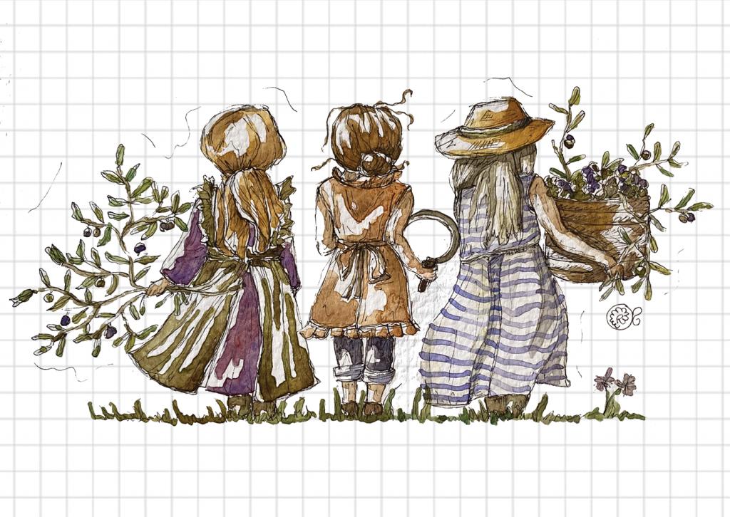 illustrazione olio d'oliva le olivastre