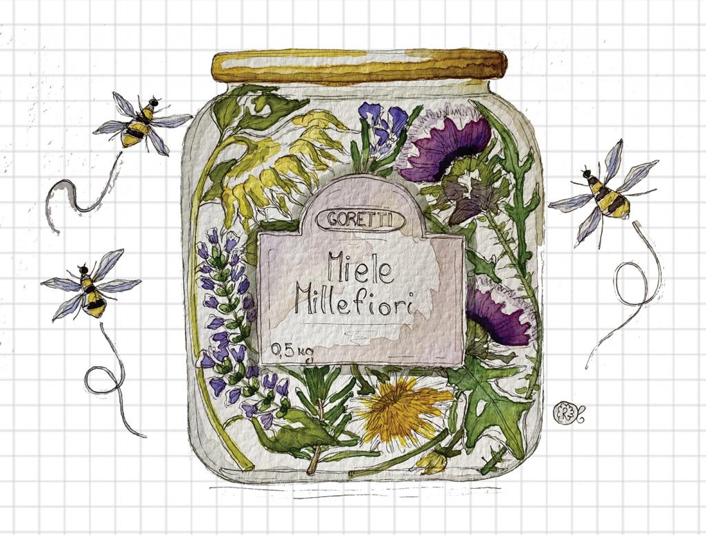 barattolo miele millefiori