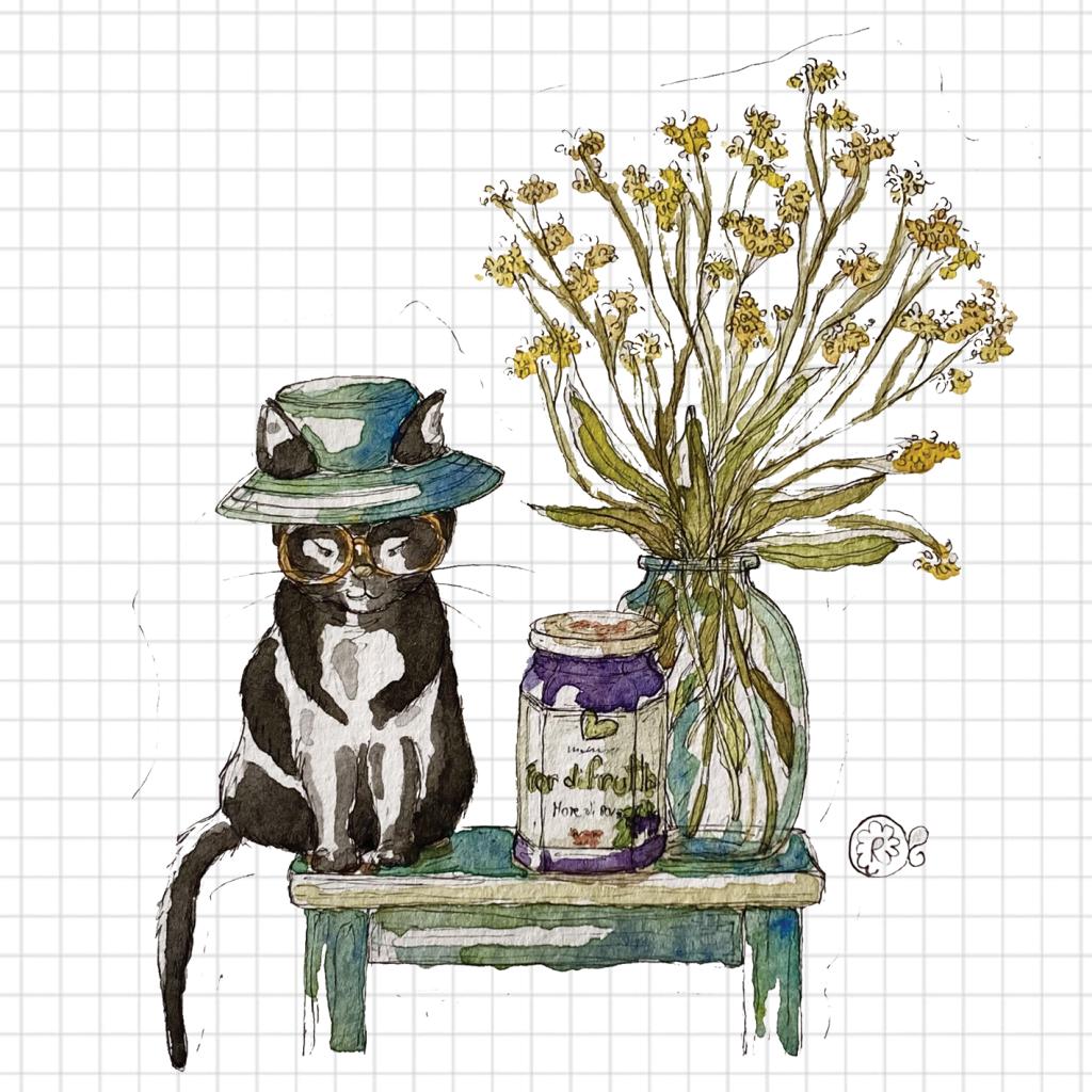 illustrazione gatto e marmellata